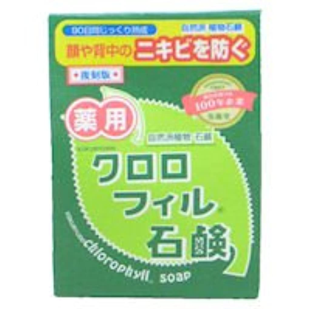 夕食を作る冒険スーツケース【黒龍堂】薬用 クロロフィル石鹸 85g