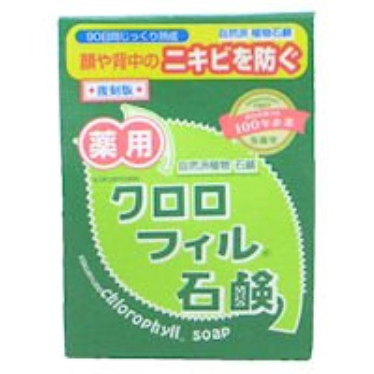 プラスチック松の木湿気の多い【黒龍堂】薬用 クロロフィル石鹸 85g