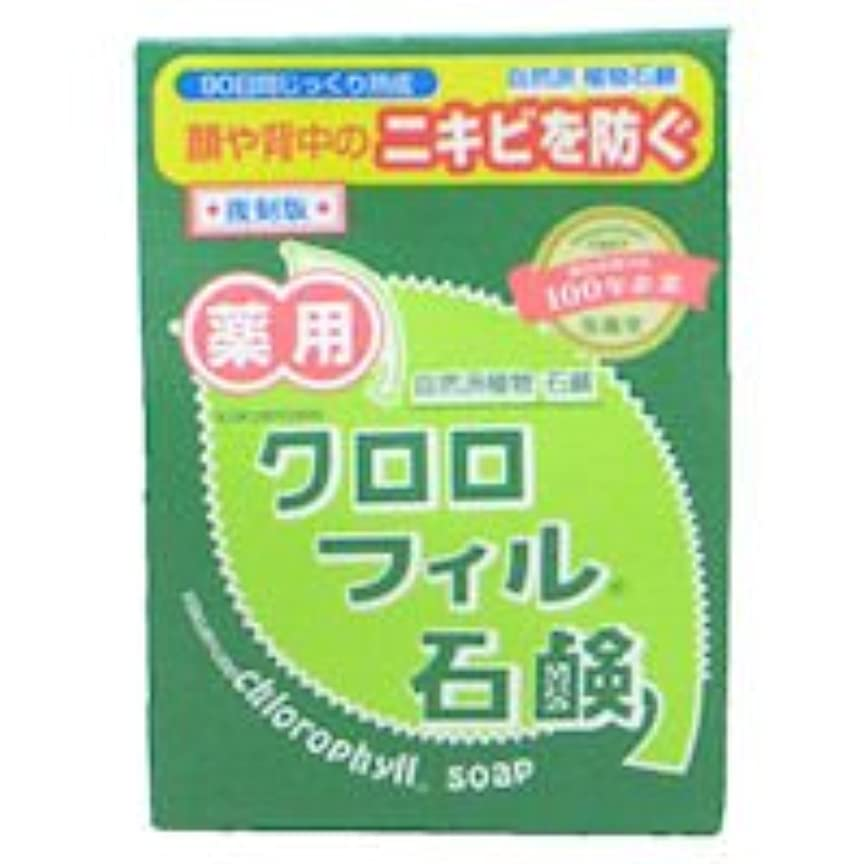 ビジネス服を着る弾力性のある【黒龍堂】薬用 クロロフィル石鹸 85g