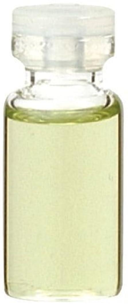 ドラゴンメモ染料生活の木 ゼラニウム 50ml