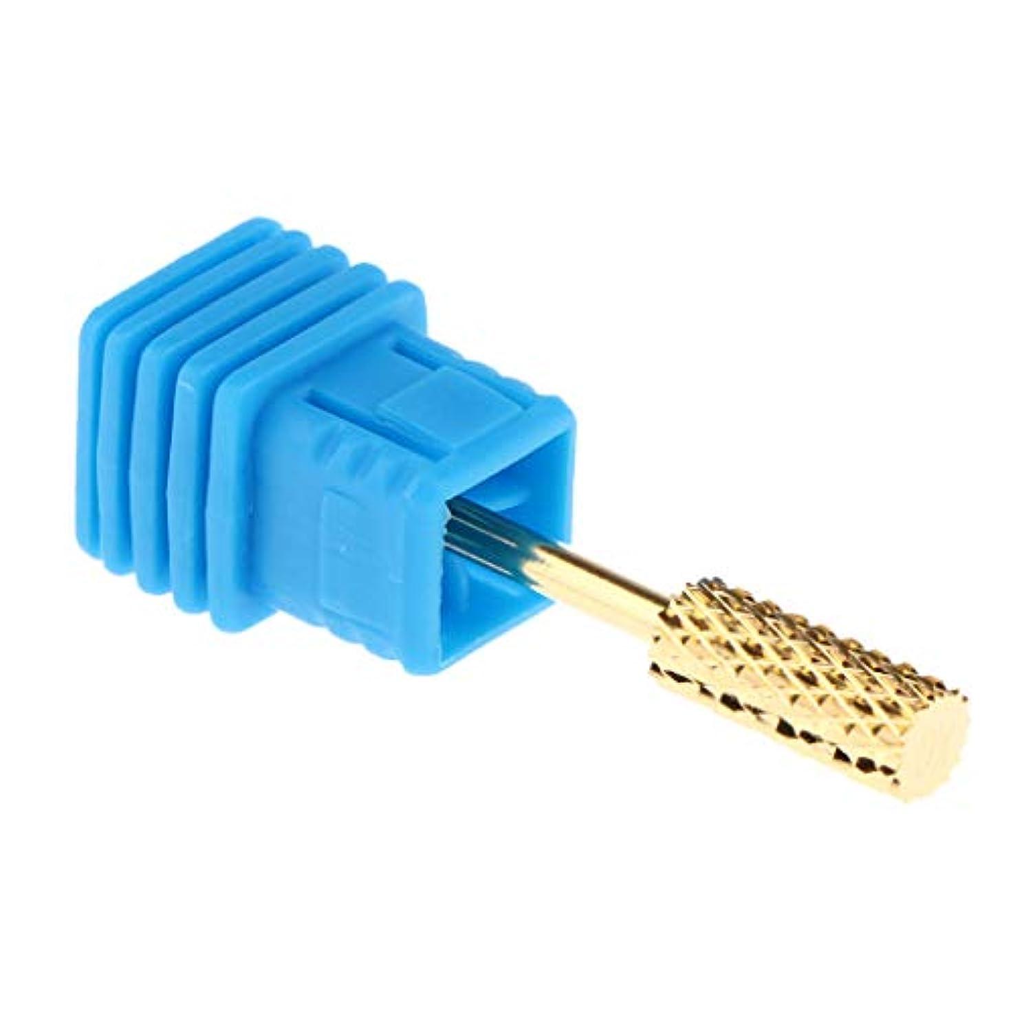 弱めるペイントプレゼン手入れの行き届いたネイルネイルのためのヘッドを挽く電気ネイルドリルビット - XC