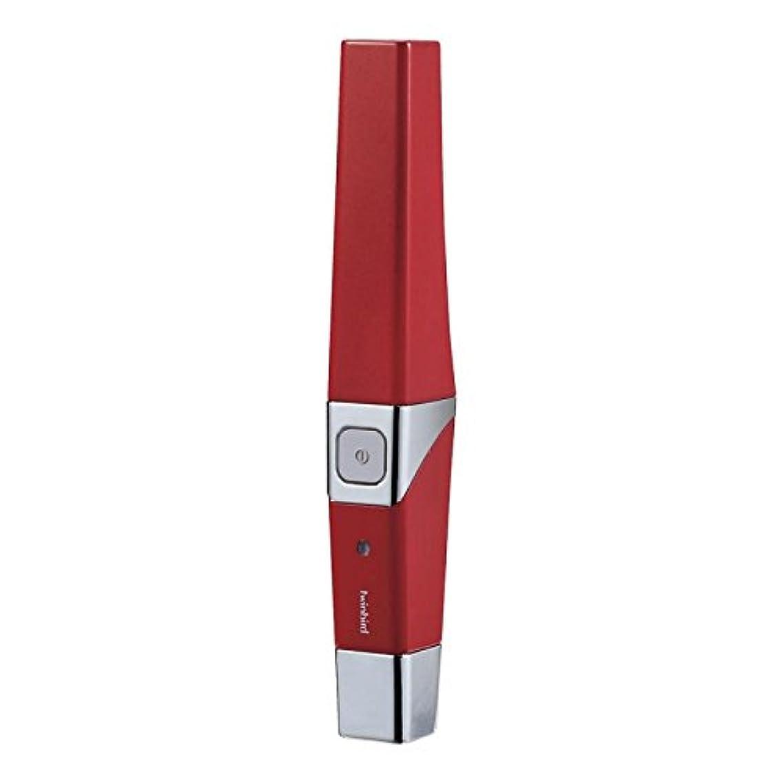 蜂学士リゾートツインバード 音波振動式USB充電歯ブラシ ACアダプター付 レッド BD-2757R