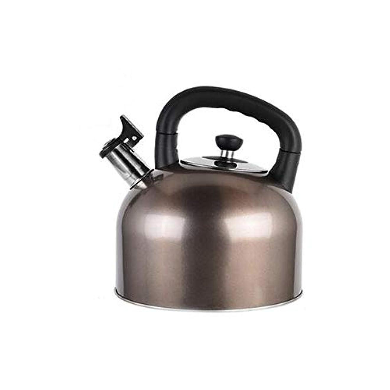 非アクティブマーキー塊Fengshangshanghang ゴージャスなティーポット - 私の最速の沸騰、高品質304ステンレス鋼のティーポット - 大容量4L-5L-6L-銀 多目的 (Capacity : 4L, Color : Gray)