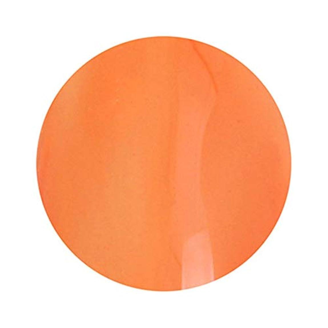 毛細血管注釈を付ける愛T-GEL COLLECTION ティージェルコレクション カラージェル D235 クリアダークオレンジ 4ml