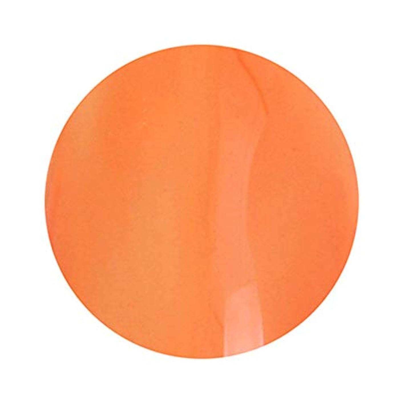 エピソード甘やかす純粋にT-GEL COLLECTION ティージェルコレクション カラージェル D235 クリアダークオレンジ 4ml