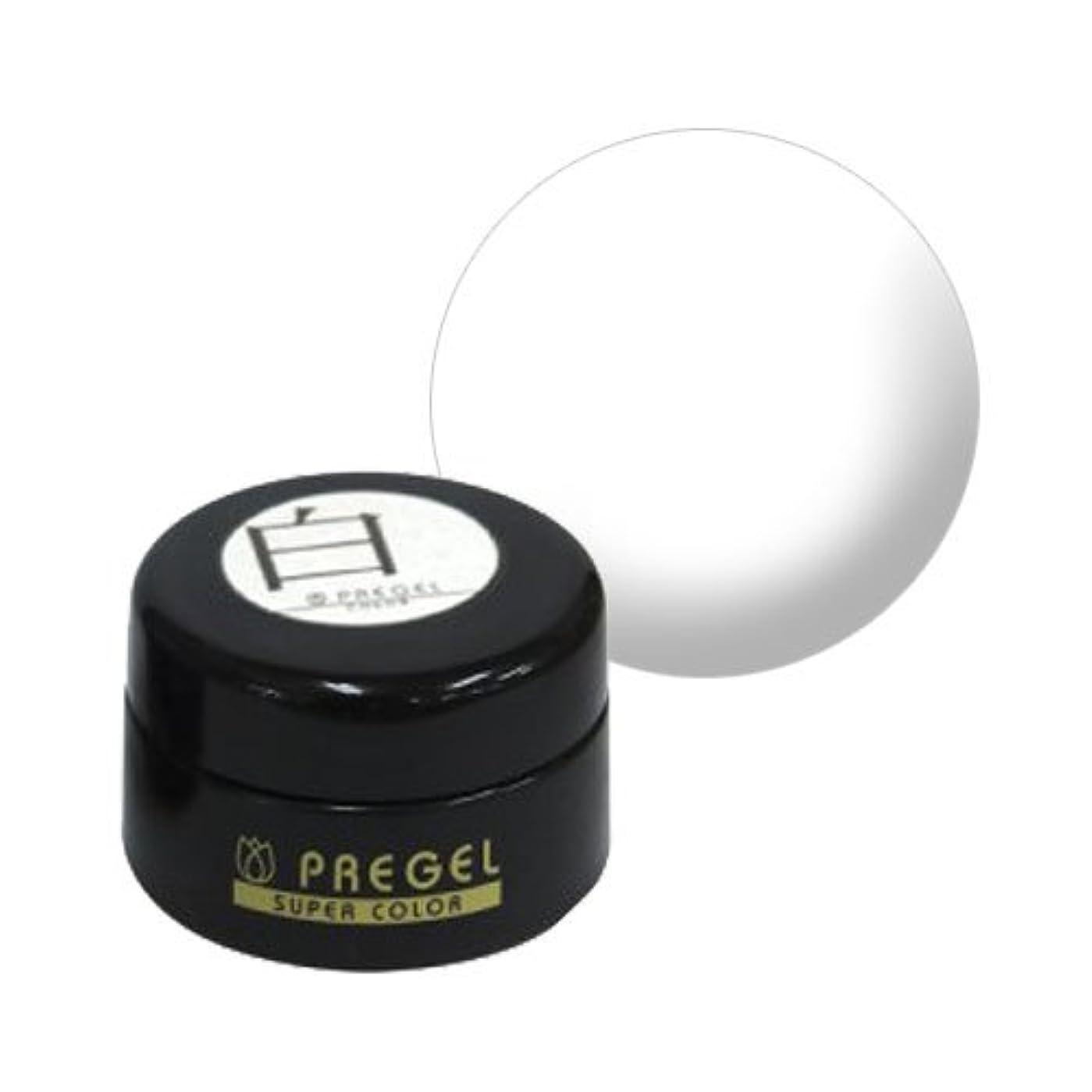 軌道病院バンガロー【PREGEL】カラーEx 白 / PG-CE110 【UV&LED】プリジェル カラージェル ジェルネイル用品