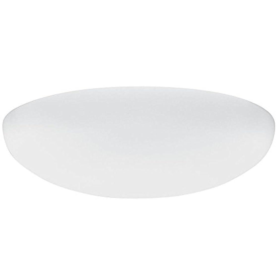 リンケージ驚かす素晴らしきLithonia Lighting DFMLRL14 M4 Replacement Diffuser, 14, White by Lithonia Lighting