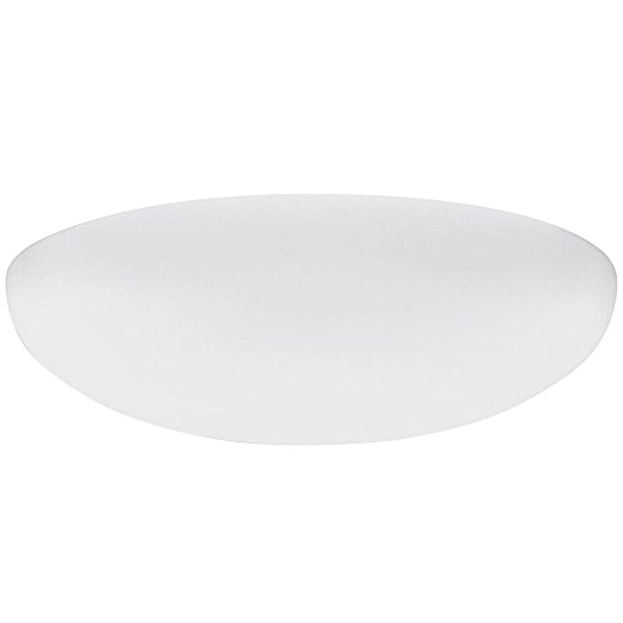 熟達した曖昧なキャンプLithonia Lighting DFMLRL14 M4 Replacement Diffuser, 14, White by Lithonia Lighting