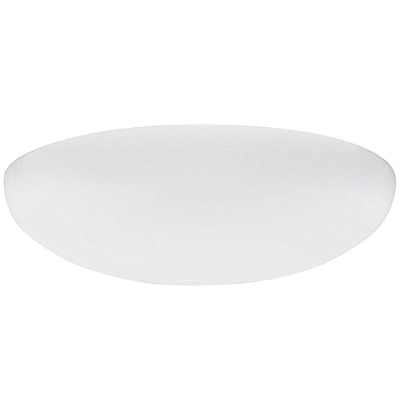 努力するびっくりしたセグメントLithonia Lighting DFMLRL14 M4 Replacement Diffuser, 14, White by Lithonia Lighting