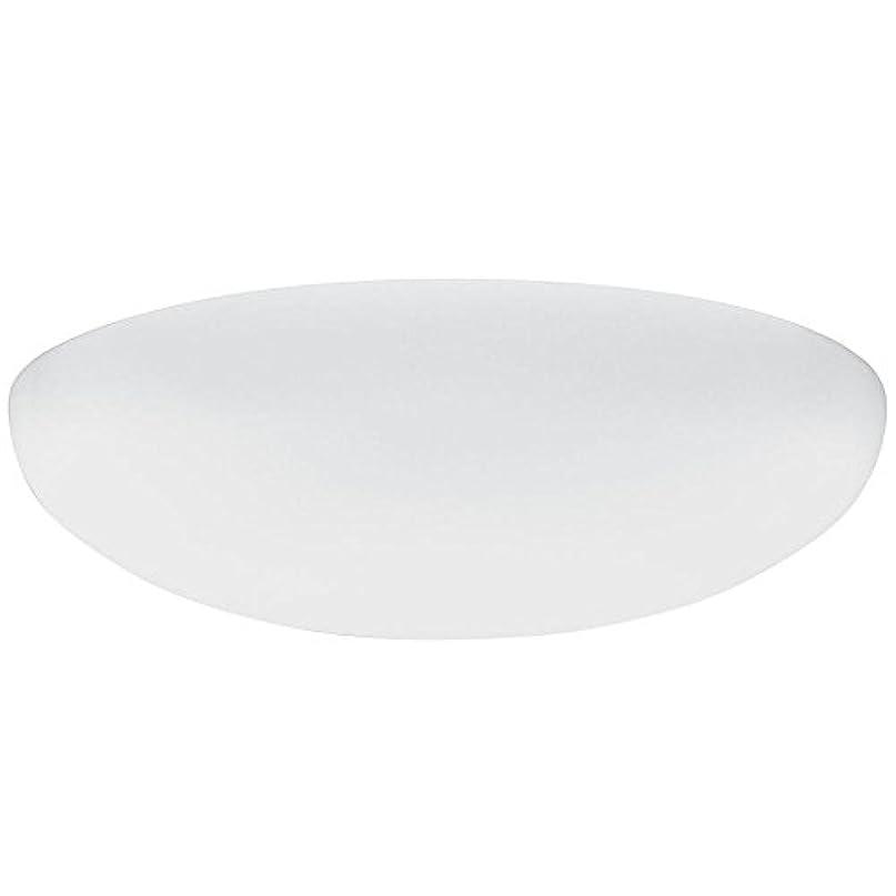 代数パッケージ緑Lithonia Lighting DFMLRL14 M4 Replacement Diffuser, 14, White by Lithonia Lighting