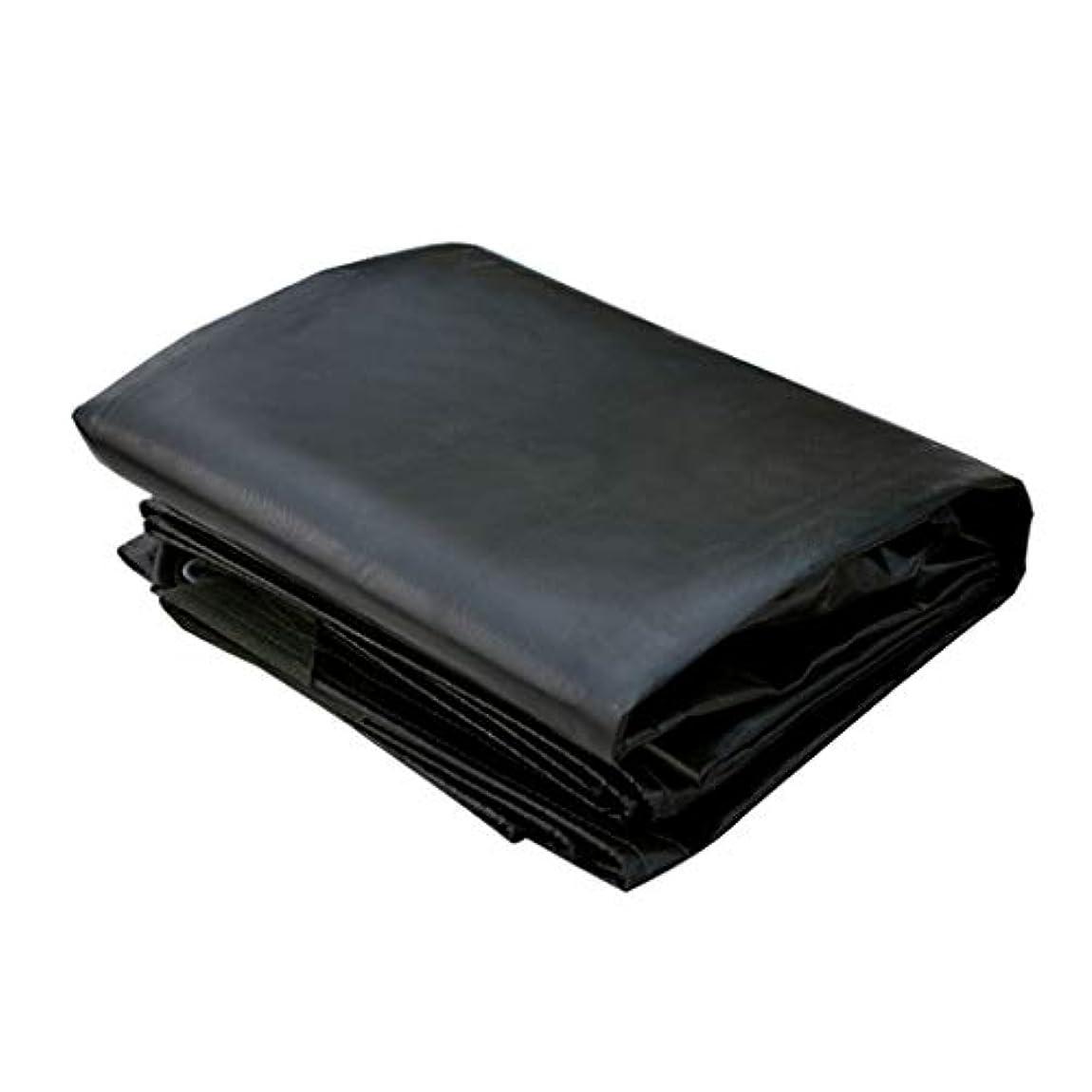 現実答え消費黒いポリエステル日焼け止めおよび雨止めの防水シート、金属のアイレットが付いている屋外のキャンプカバー頑丈な厚さ0.55mm (Size : 3x4m)