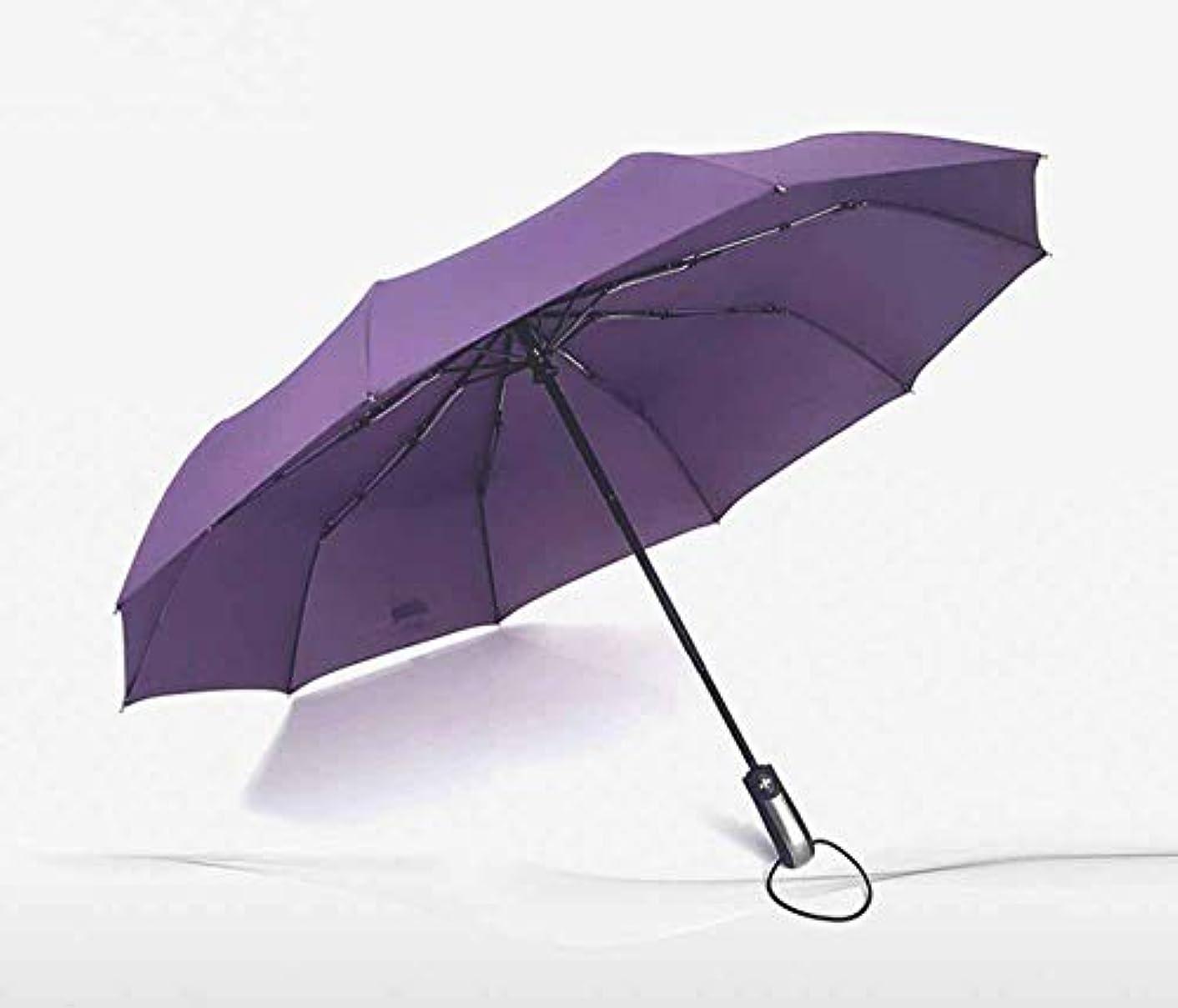 処方する数字日記Chuangshengnet 傘10骨防風強化二重晴れ雨全自動折りたたみ傘 (Color : 紫の)