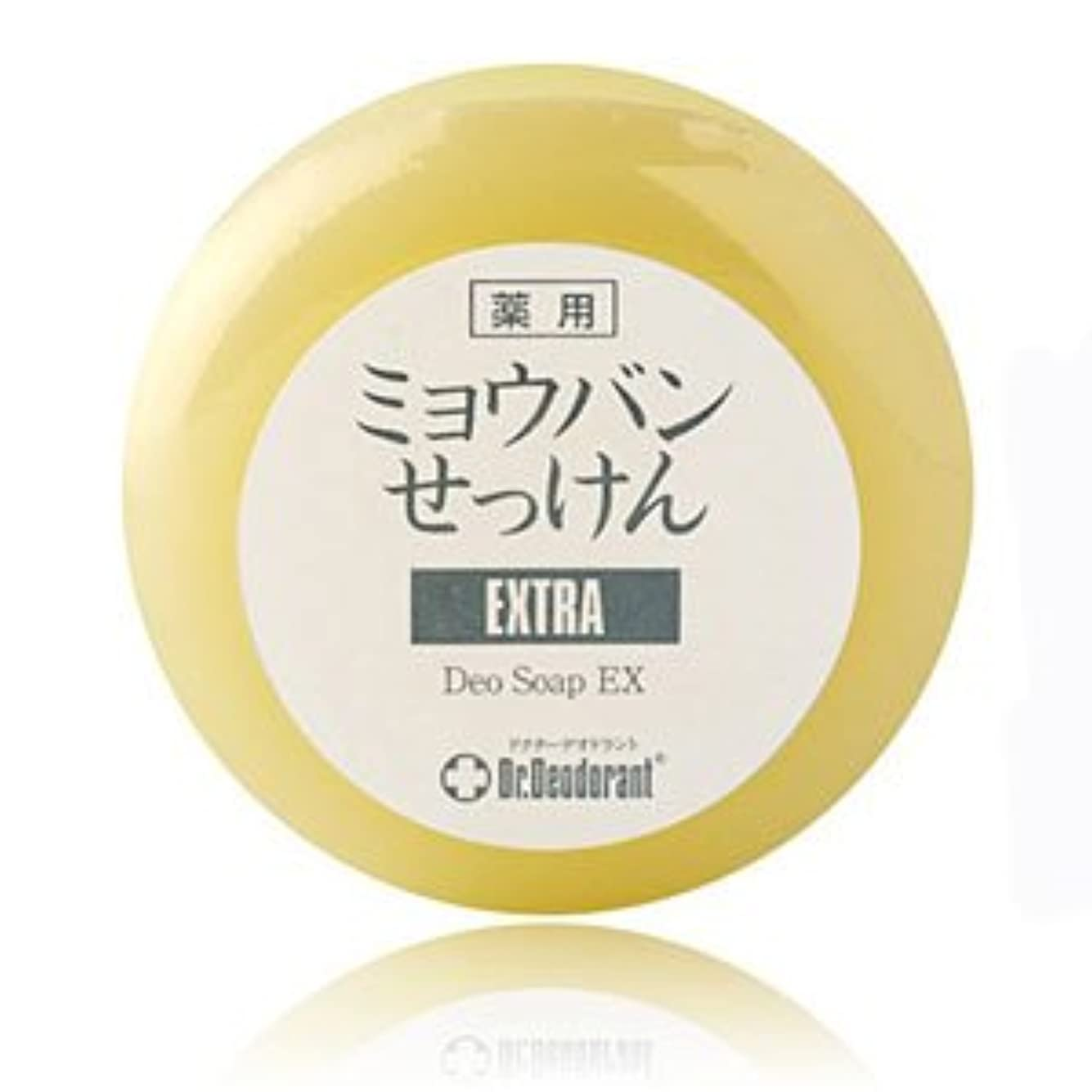 寛大さ指紋ロードブロッキングドクターデオドラント 薬用ミョウバン石鹸EX 2個セット