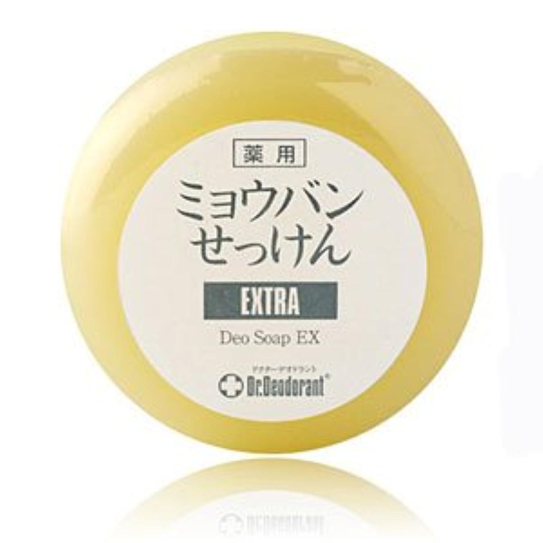 配偶者検索ほこりっぽいドクターデオドラント 薬用ミョウバン石鹸EX 2個セット