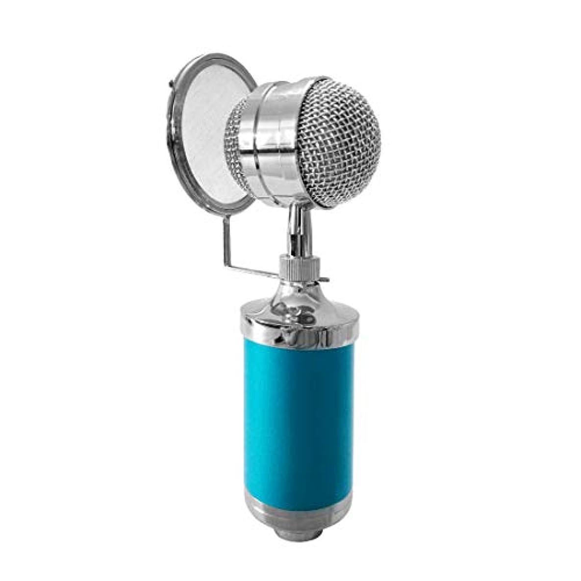 残酷豪華な聖歌マイクアクセサリー 3000ホームKTVマイクコンデンサーサウンドレコーディングマイク、ショックマウント&ポップフィルター(PC&ラップトップ用)、3.5mmイヤホンポート、ケーブル長:2.5m 有線マイク (色 : Blue)