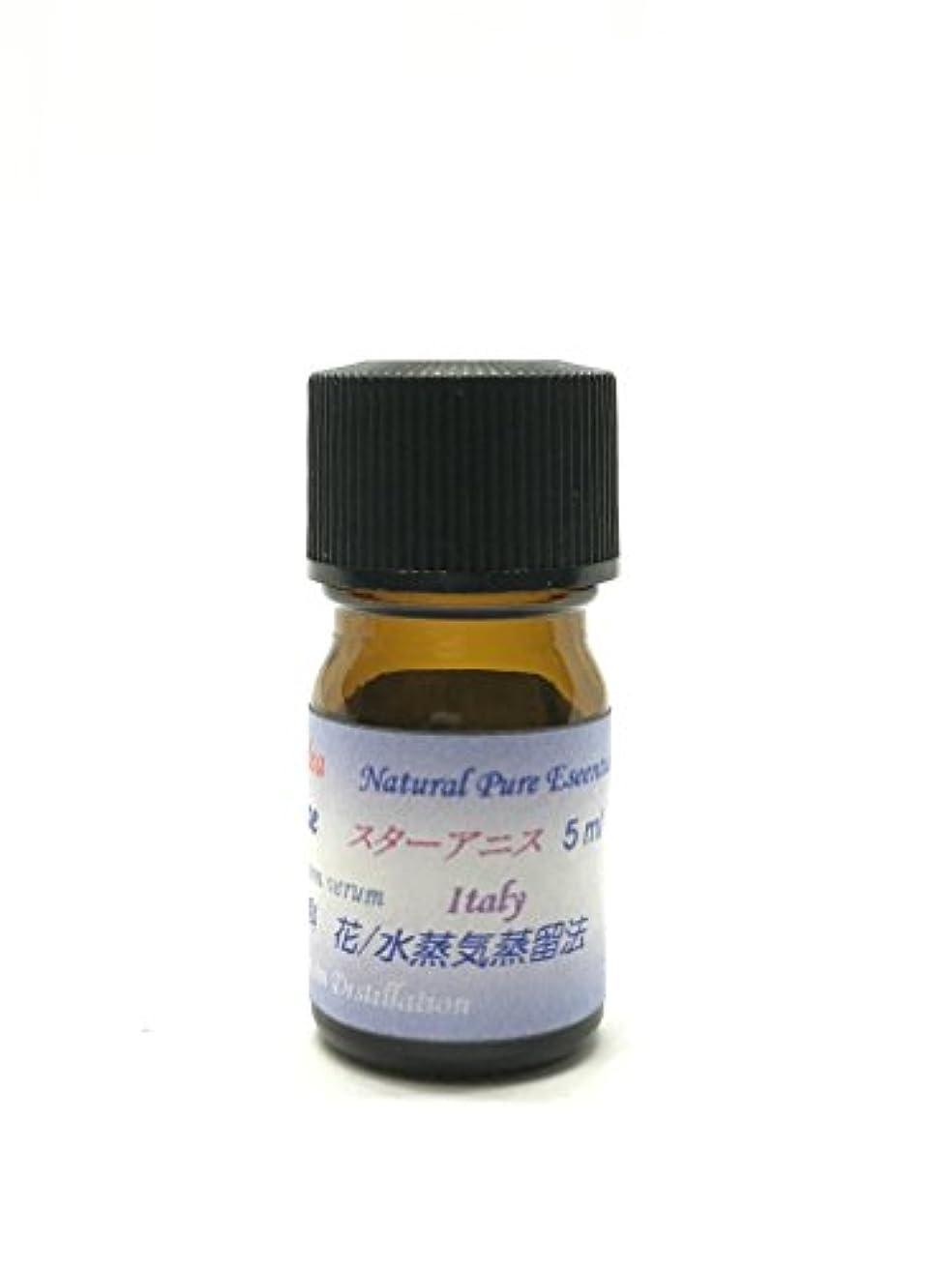 疎外略語スプーンアニシードエッセンシャルオイル精油 ピュアエッセンシャルオイル (30ml)
