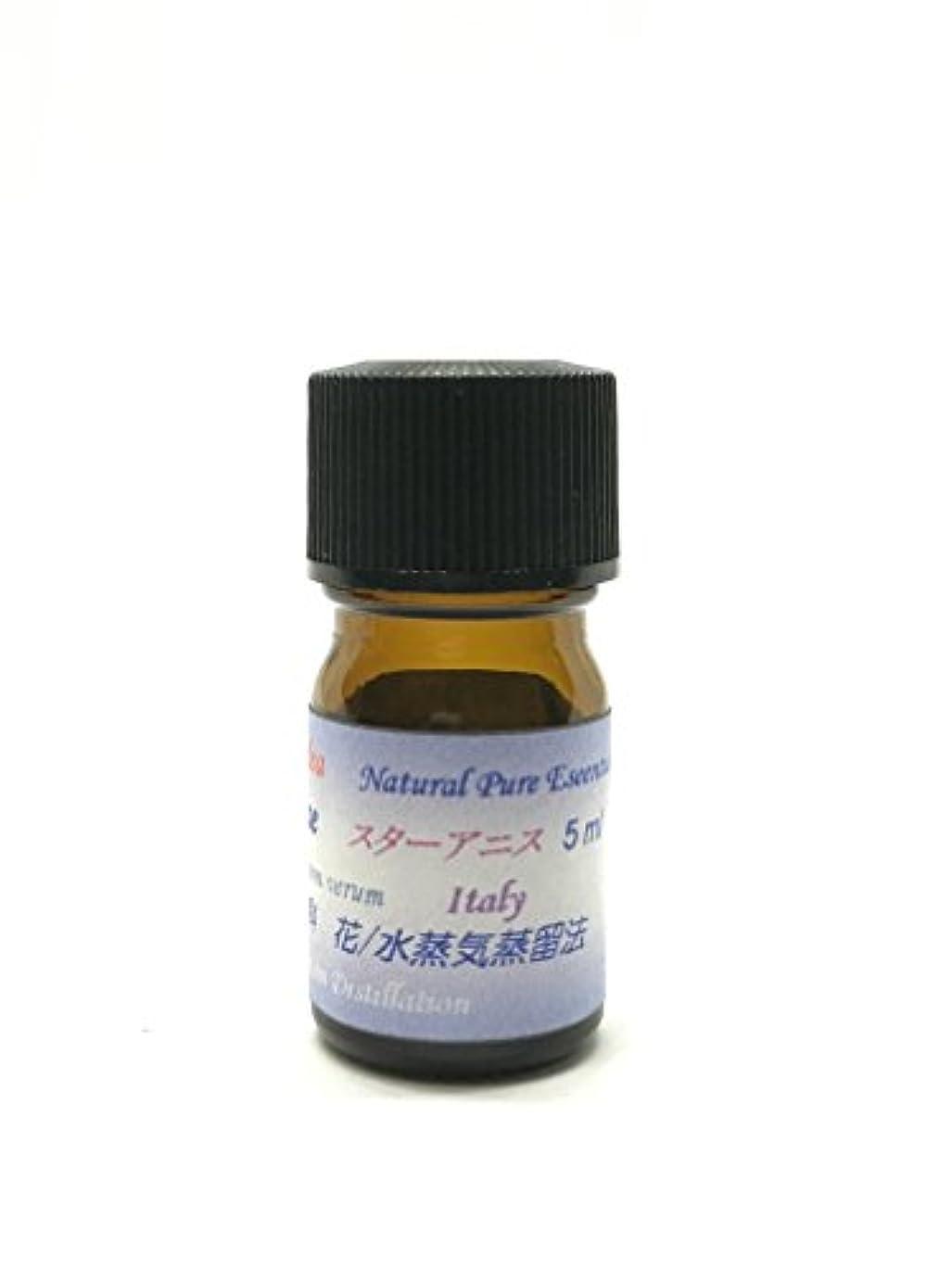 出発する調子内部アニシードエッセンシャルオイル精油 ピュアエッセンシャルオイル (30ml)