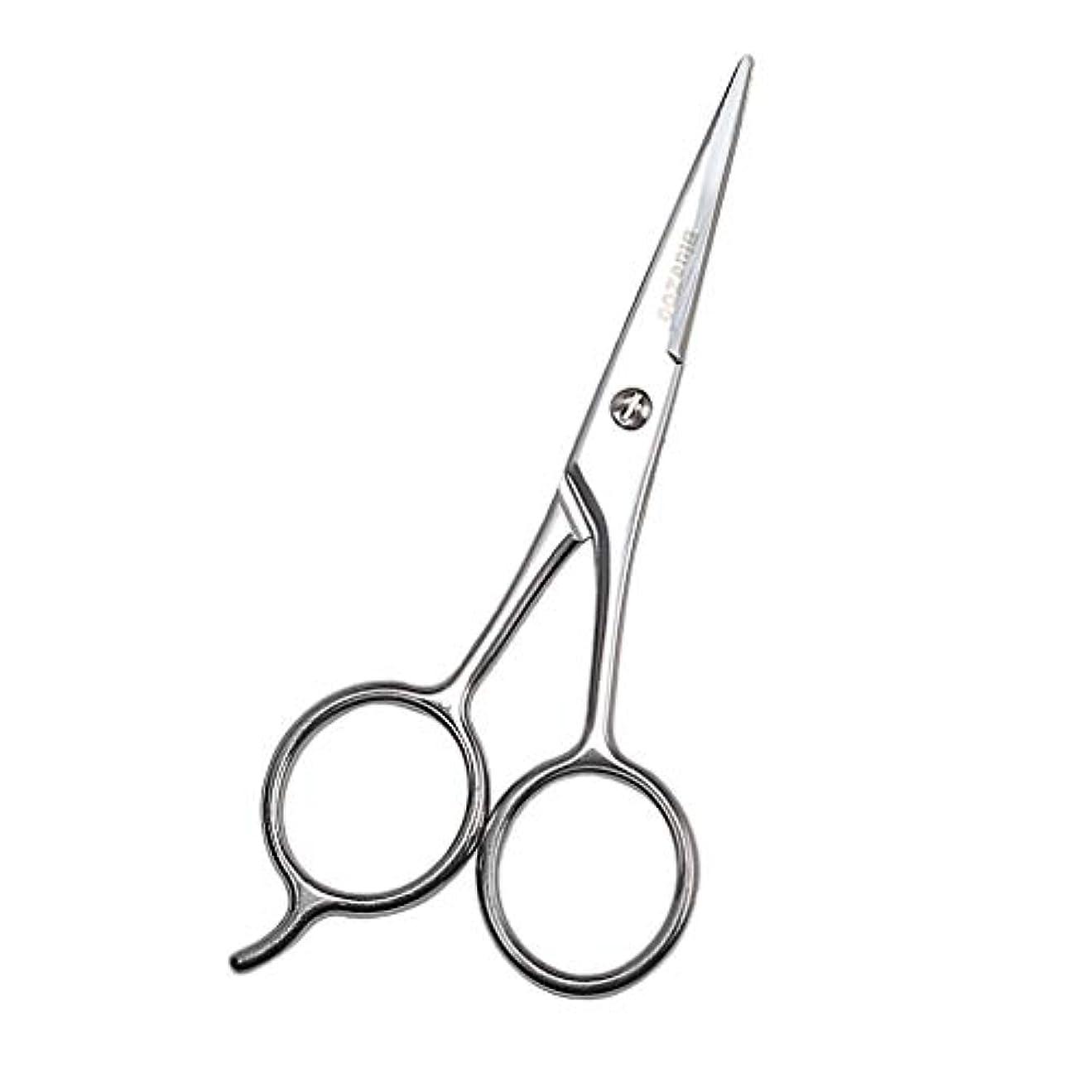 ディスク息を切らして不正確Baoblaze 小型ハサミ シザー 美容鋏 ステンレス 眉毛 鼻毛 まつげ 鋭い シルバー 13cm