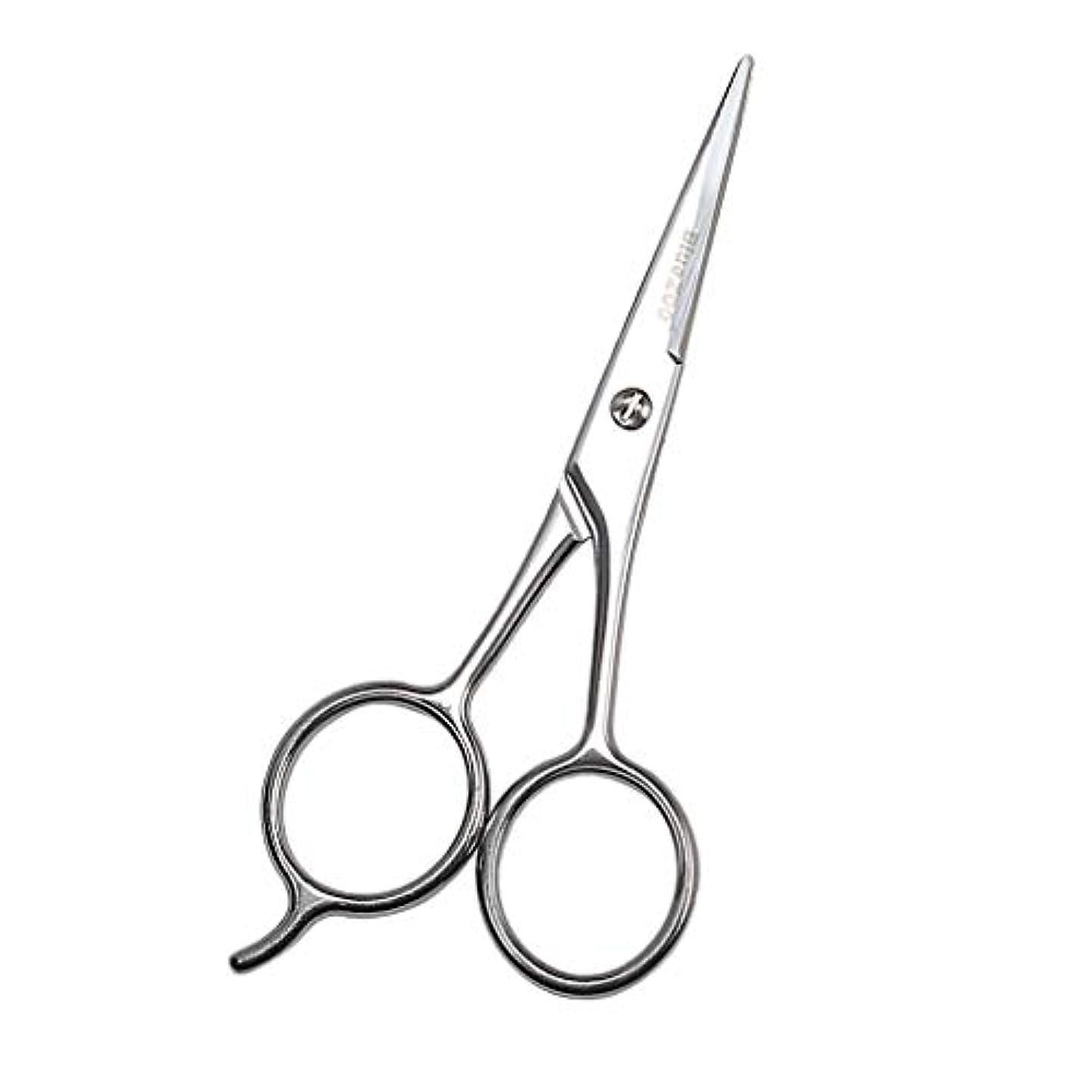 刺しますいつでも学習Baoblaze 小型ハサミ シザー 美容鋏 ステンレス 眉毛 鼻毛 まつげ 鋭い シルバー 13cm