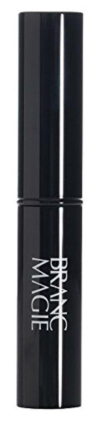 ブランマジー ステックファンデーション UV 01 ライトオークル