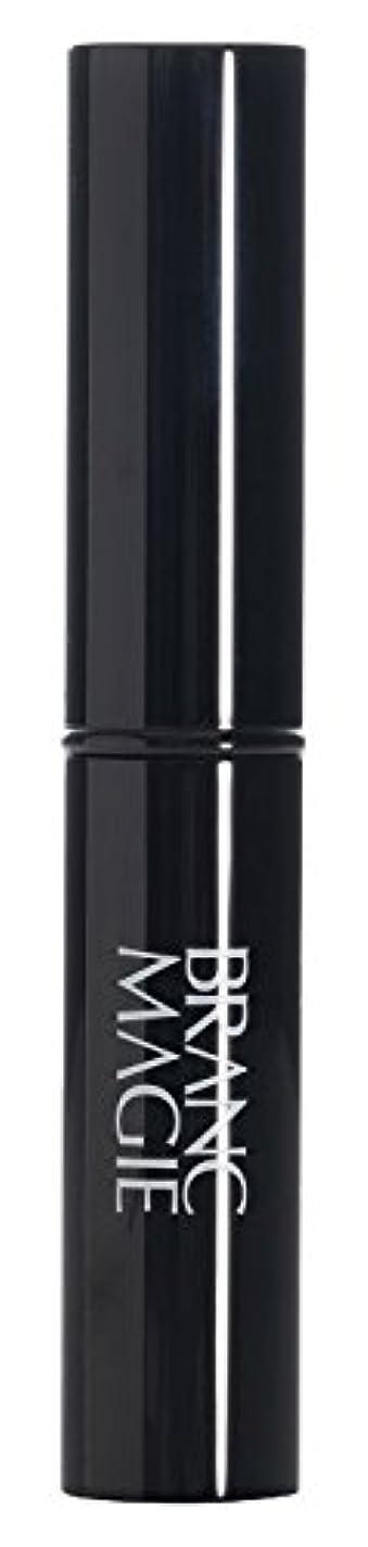 発行する里親ポットブランマジー ステックファンデーション UV 01 ライトオークル