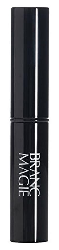 配管自治倍率ブランマジー ステックファンデーション UV 01 ライトオークル