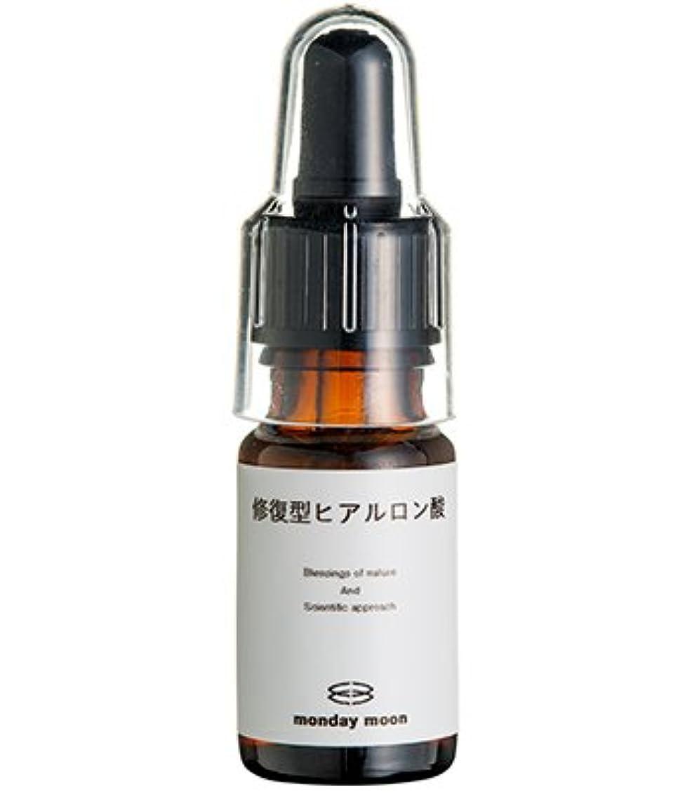 甘美な連鎖マーク修復型ヒアルロン酸/10ml