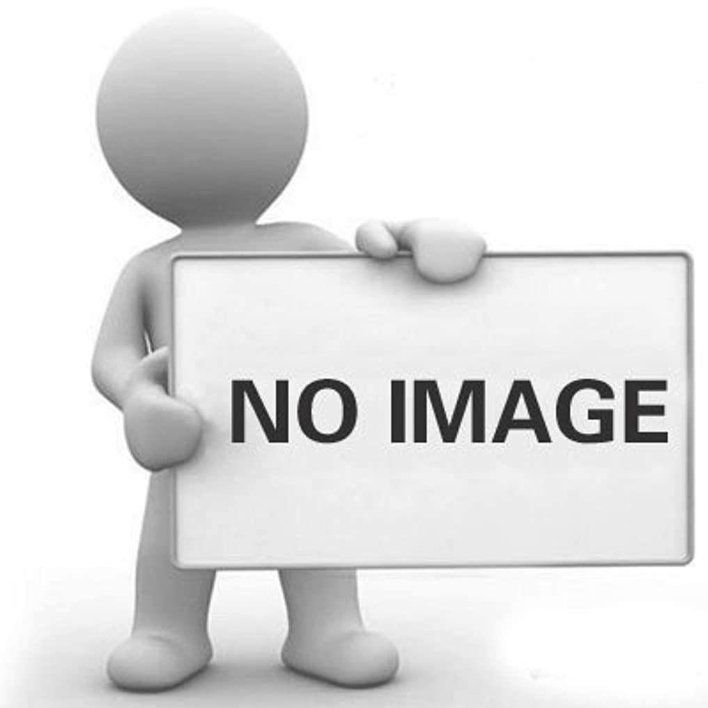 受ける債務登るDYNWAVE ヘアカラーブラシサロンブラシ漂白色合いパーマ染料着色ブラシ(2パック)