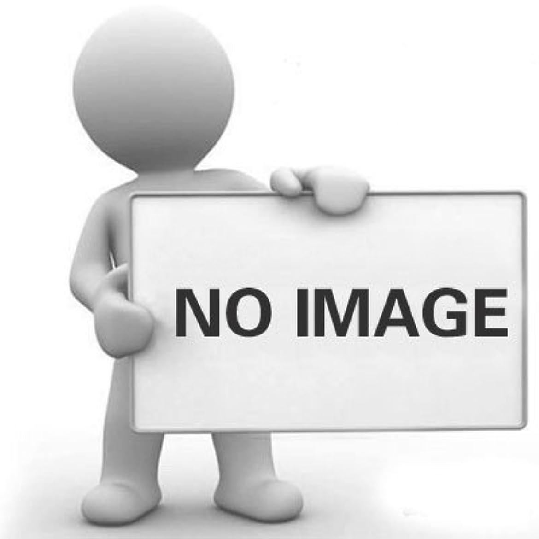 クレデンシャルれんがたとえヘアカラーブラシサロンブラシ漂白色合いパーマ染料着色ブラシ(2パック)