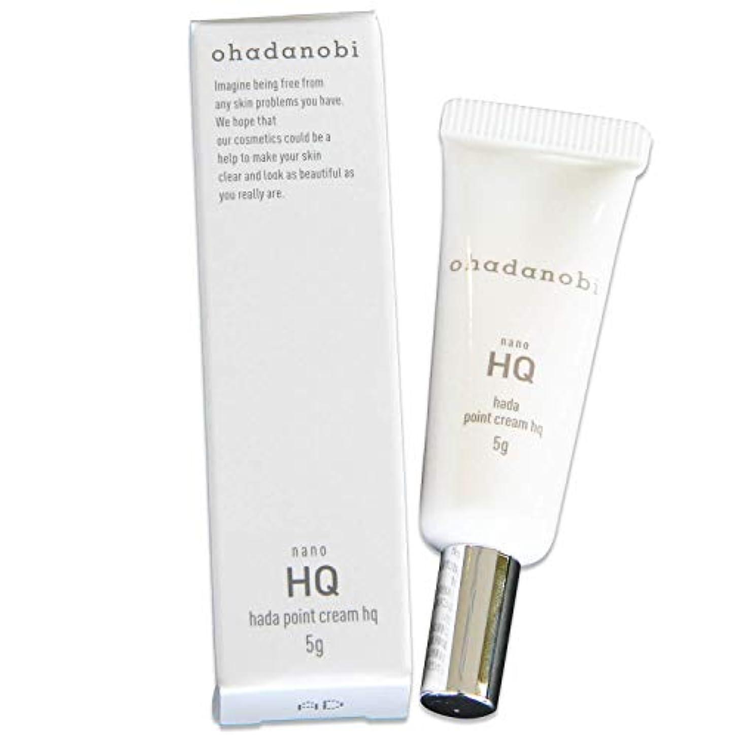 水分きちんとした自動化純 ハイドロキノン 4% 配合 日本製 ハダポイントクリームHQ オハダノビ