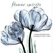 FLOWER SPIRITSの詳細を見る