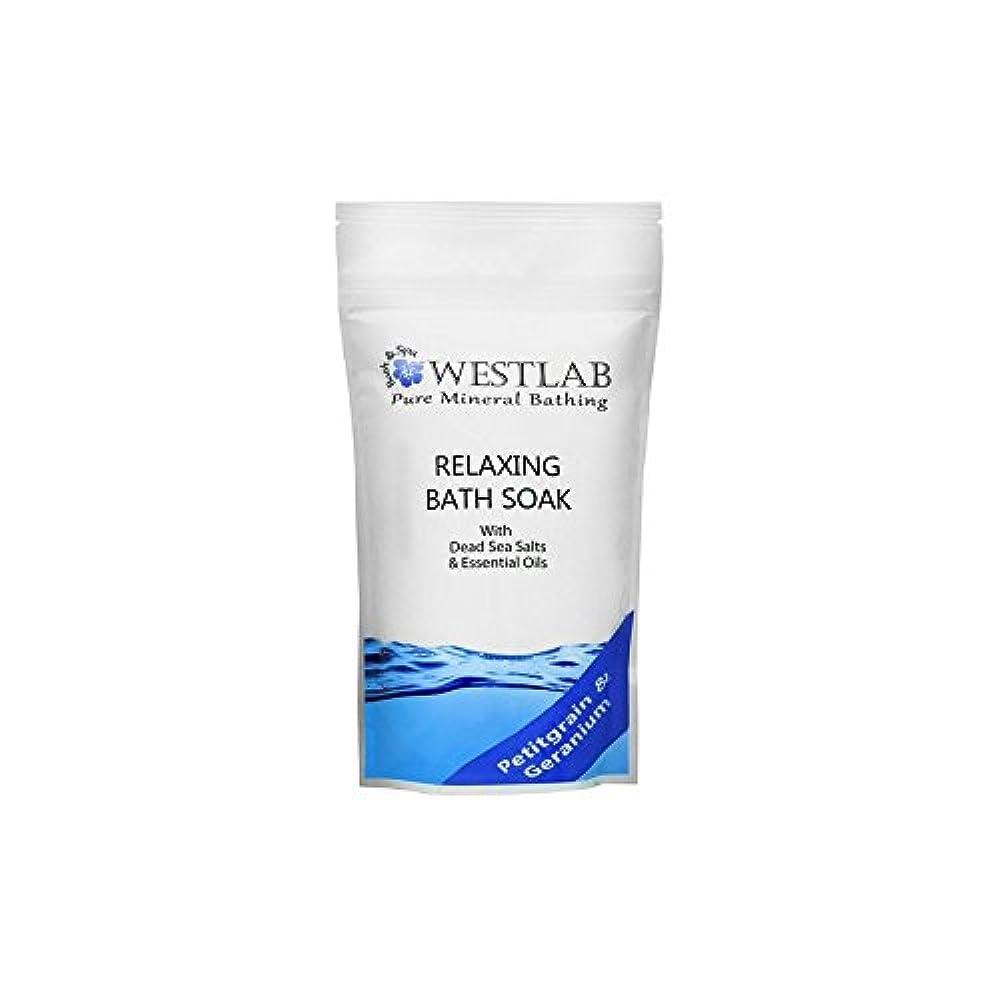 障害者意識撤回するWestlab Relax Dead Sea Salt Bath Soak (500g) - 死海の塩浴浸漬(500グラム)をリラックス [並行輸入品]