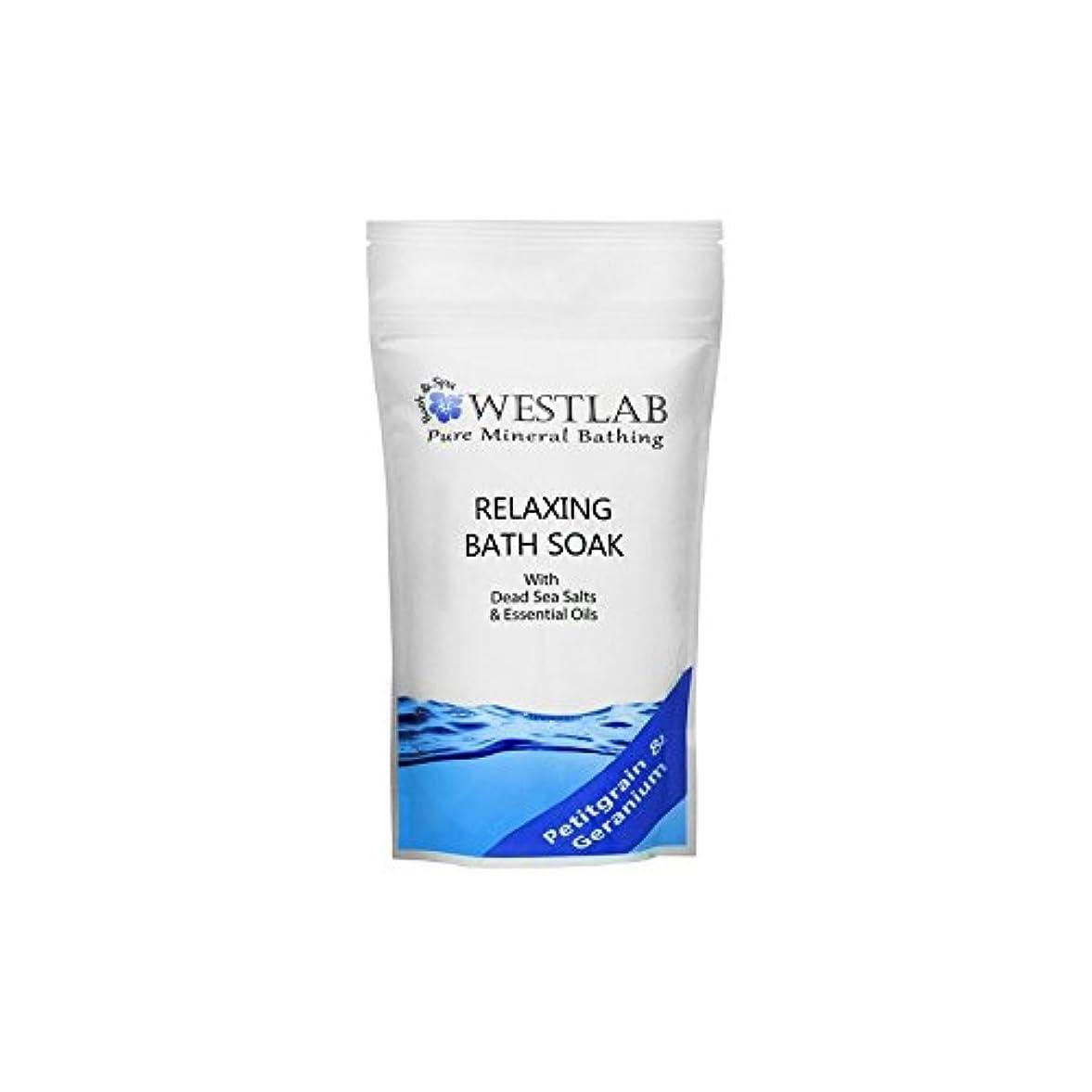 フェードアウト肉ののり死海の塩浴浸漬(500グラム)をリラックス x4 - Westlab Relax Dead Sea Salt Bath Soak (500g) (Pack of 4) [並行輸入品]