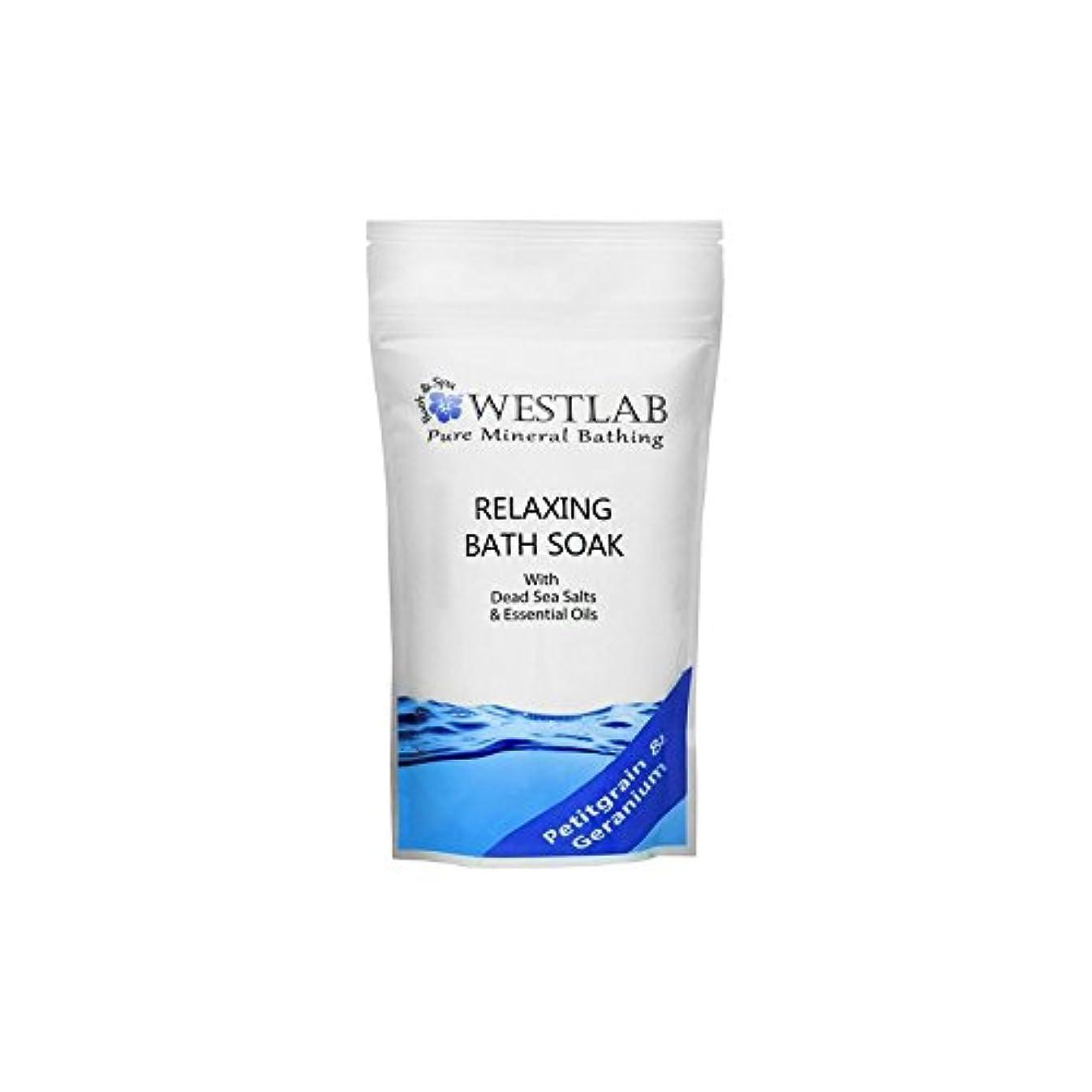 代名詞蓋風刺Westlab Relax Dead Sea Salt Bath Soak (500g) - 死海の塩浴浸漬(500グラム)をリラックス [並行輸入品]