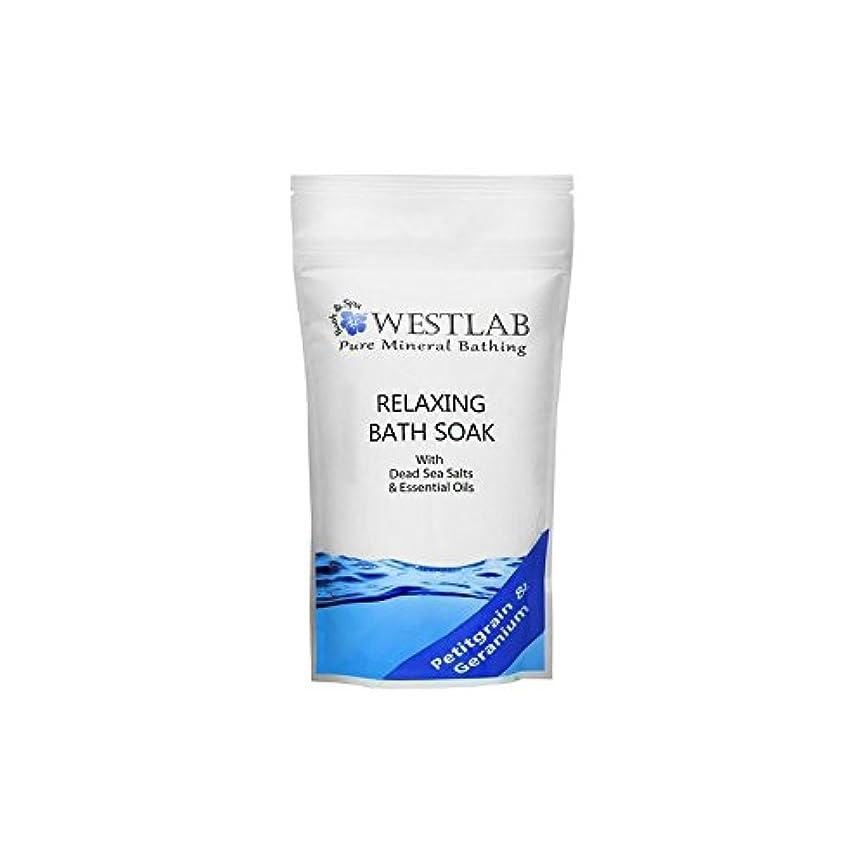 ラリー口述するウェイトレス死海の塩浴浸漬(500グラム)をリラックス x4 - Westlab Relax Dead Sea Salt Bath Soak (500g) (Pack of 4) [並行輸入品]