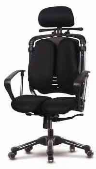 Hara Chair(ハラチェア)ニーチェ【標準肘モデル】(ブラック)高機能チェア 高機能チェアー オフィスチェア パソコンチェア ハラチェアー haraチェア デスクチェア リクライニング ハイバック ヘッドレスト 腰痛 イス 椅子 事務用 回転 チェア