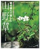 寄せ植えで楽しむ山野草―苔玉からミニ盆栽まで (LADY BIRD小学館実用シリーズ) 画像