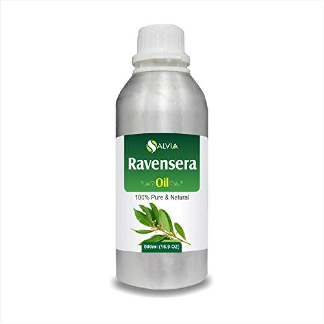 到着有毒な自殺Ravensera Oil (Ravensara aromatic) 100% Natural Pure Undiluted Uncut Essential Oil 500ml