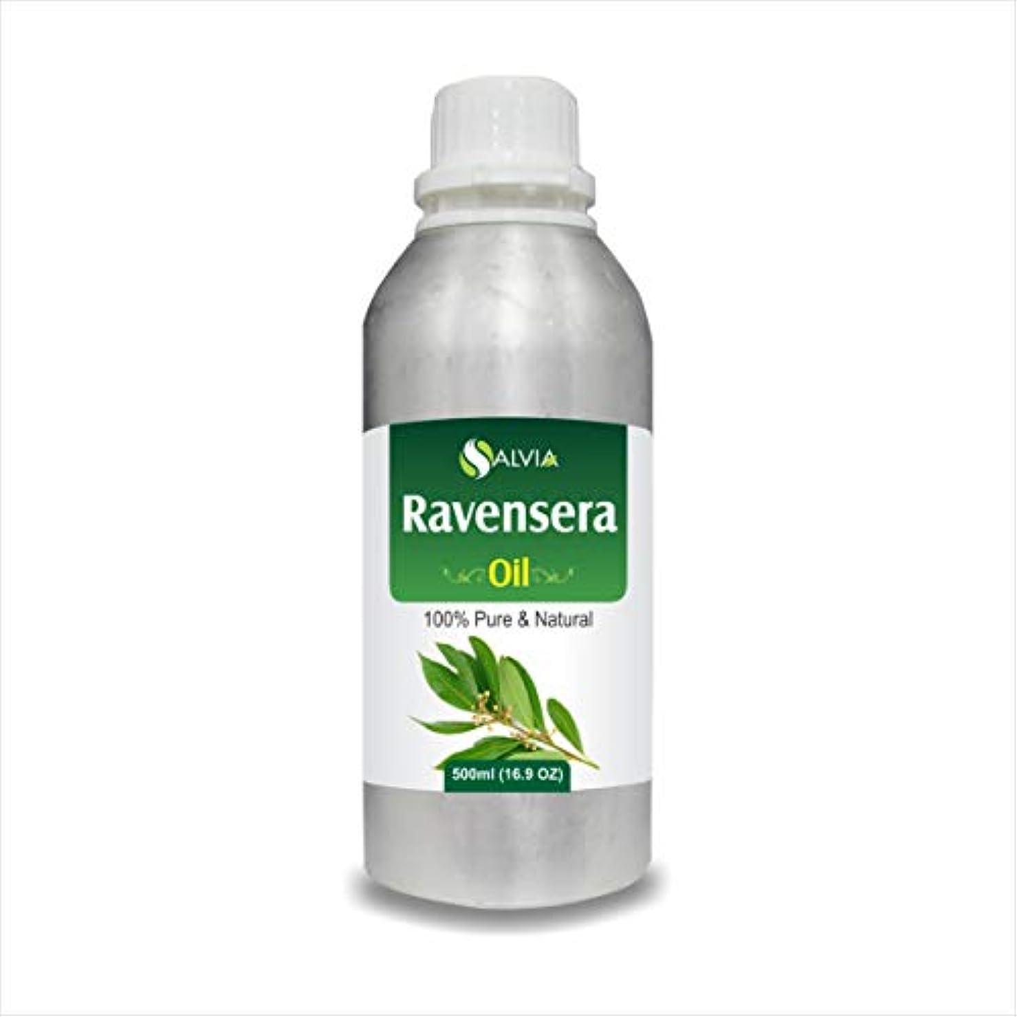 覗く支払い雄弁Ravensera Oil (Ravensara aromatic) 100% Natural Pure Undiluted Uncut Essential Oil 500ml