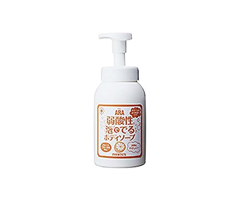 あご売るキルス弱酸性泡ででるボディソープ (アラ) 550mL /7-2238-01