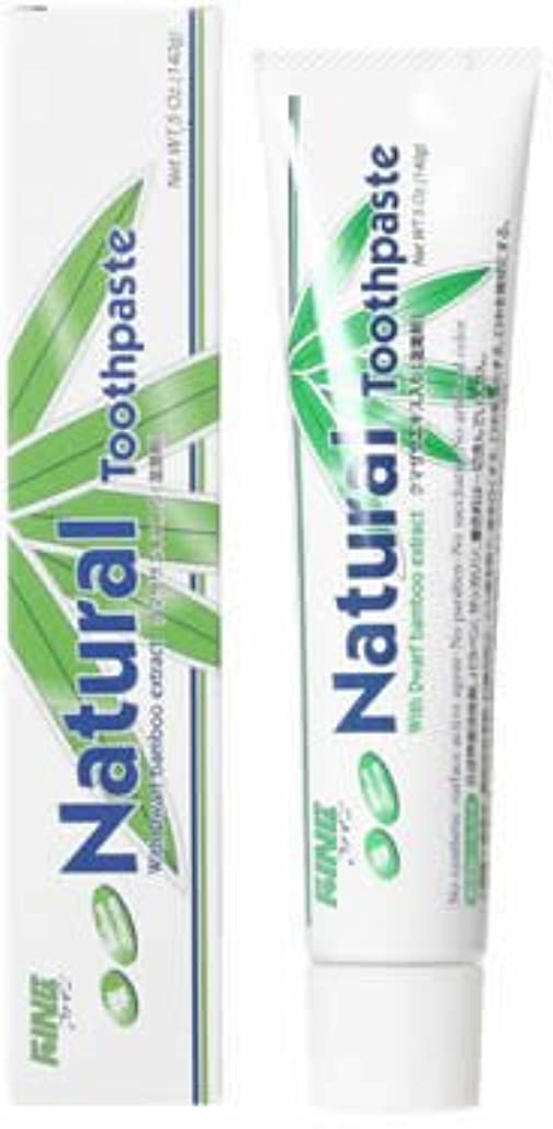傾くコショウ背景ファイン(FINE) エパック 21 ニューナチュラル歯磨き 140g