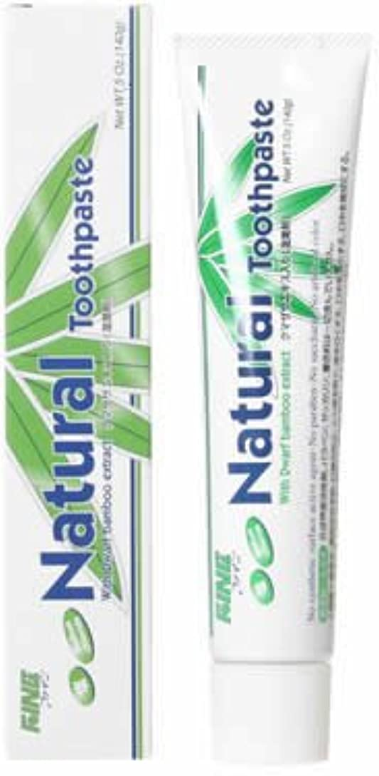 悩む神経障害成長するファイン(FINE) エパック 21 ニューナチュラル歯磨き 140g