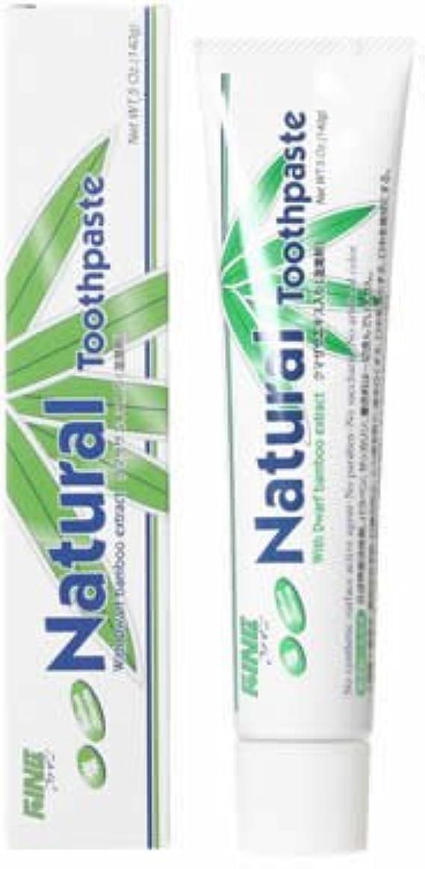 浅い材料寛容なファイン(FINE) エパック 21 ニューナチュラル歯磨き 140g