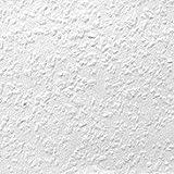 ルナファーザー 塗装下地壁紙 Tips_チップス (No.40/75)