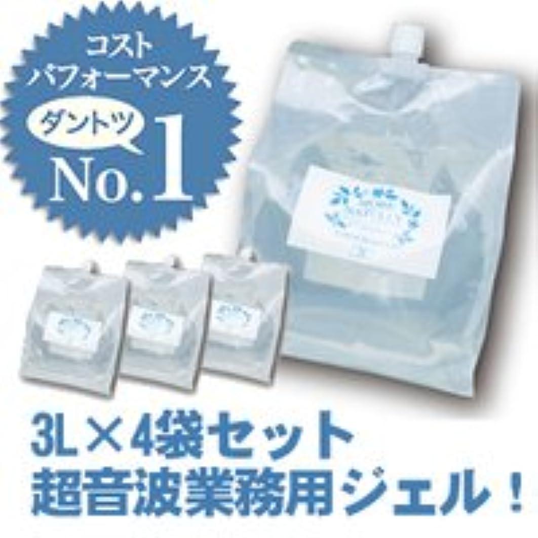 みすぼらしい機転母性モアナチュリー キャビ&フラッシュジェル 4袋セット 3L×4袋 12Lスーパーハードタイプ