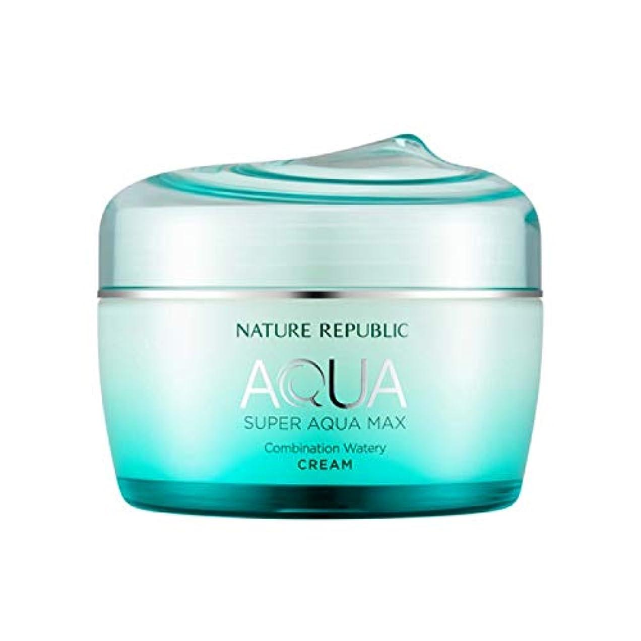 若いボイラー適性ネイチャーリパブリック(Nature Republic)スーパーアクアマックスコンビネーション水分クリーム [複合肌用] 80ml / Super Aqua-Max Combination Moisture Cream...