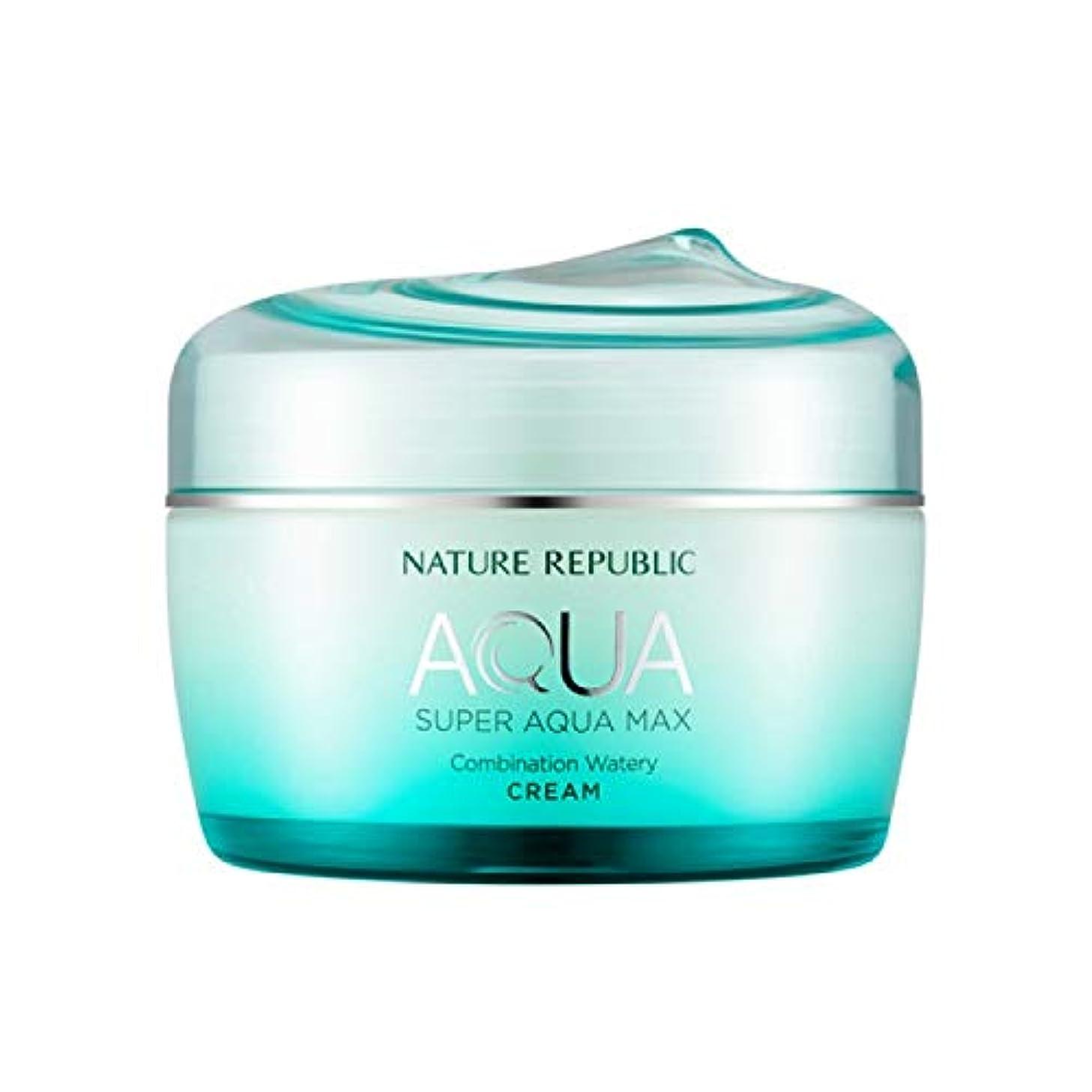 柱大型トラック腰ネイチャーリパブリック(Nature Republic)スーパーアクアマックスコンビネーション水分クリーム [複合肌用] 80ml / Super Aqua-Max Combination Moisture Cream...