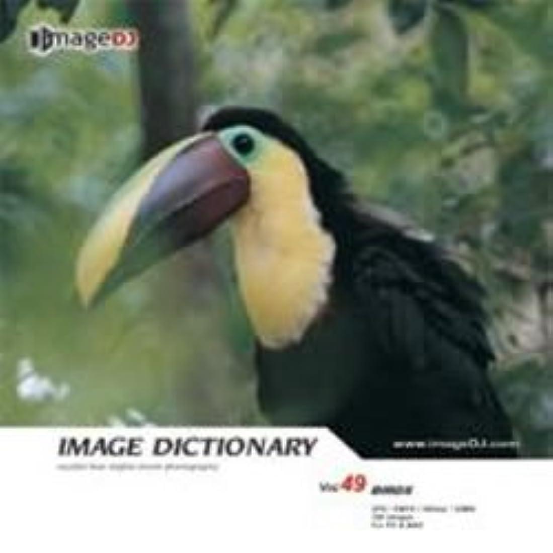 メディア進行中有限イメージ ディクショナリー Vol.49 鳥
