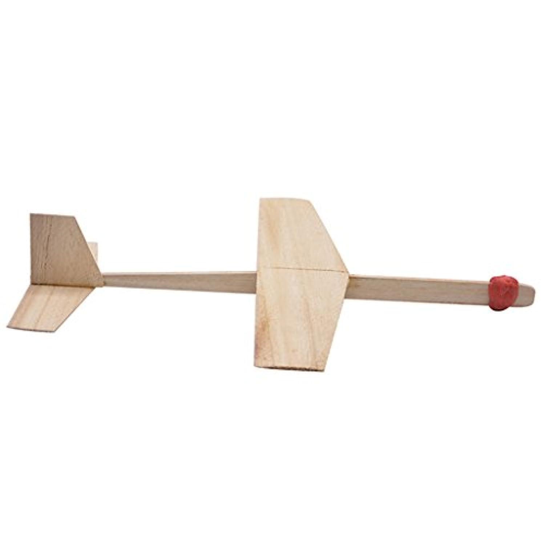 Fenteer 子ども ギフト 知育 教育玩具 科学技術実験用 投げ飛行機モデル おもちゃ