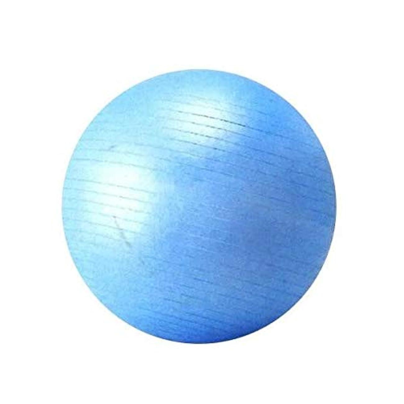 ぼかす着飾るフェードSINTEX(シンテックス) トータルフィットネス フィットネスボール 75cm バランスボール ブルー NLS7675